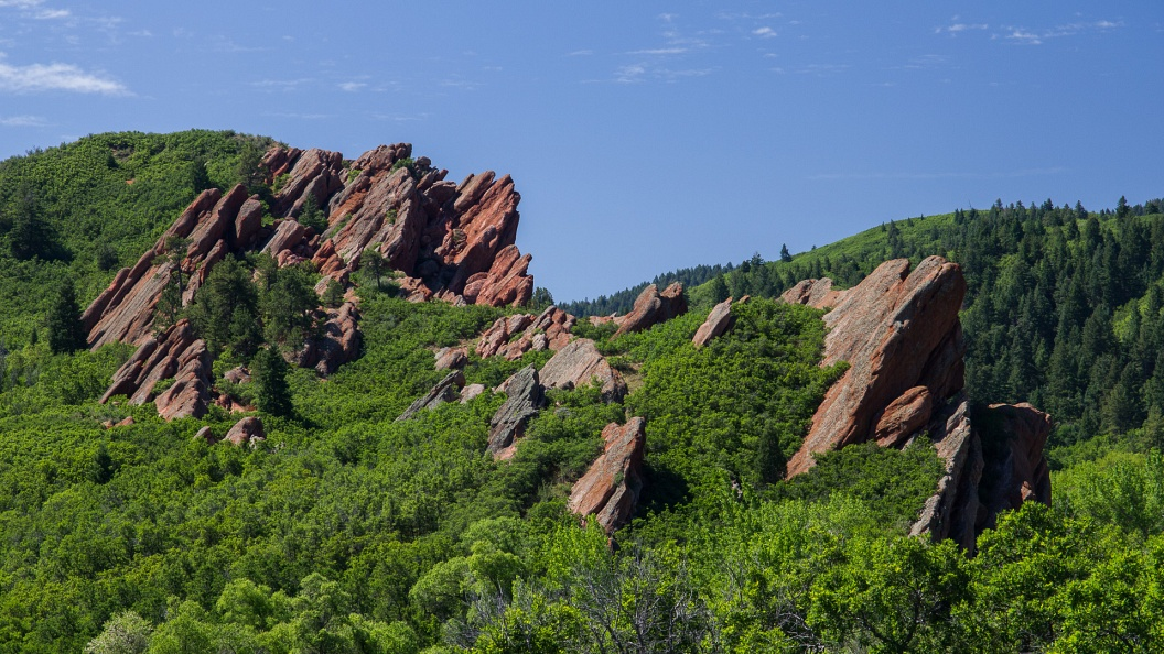 Roxborough in Spring.jpg