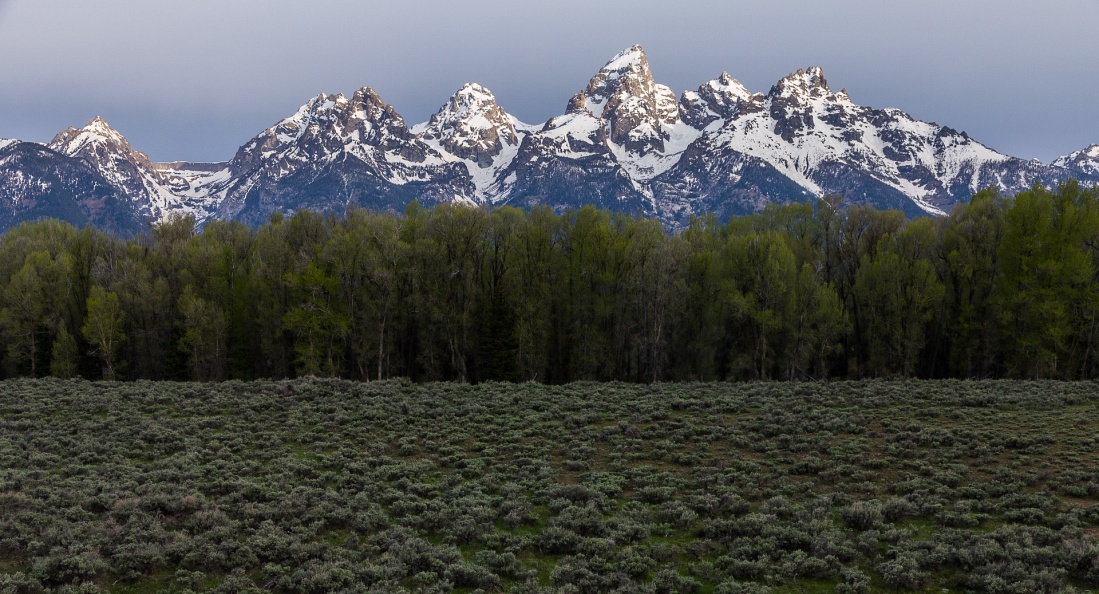 Early Spring Tetons.jpg