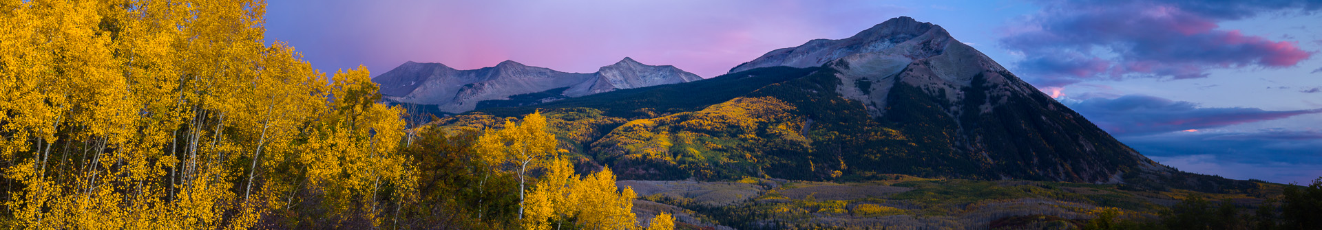 Beckwith Aspen at Dusk.jpg